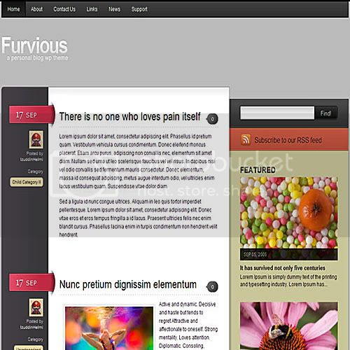 furvious theme wordpress 10 Temas grtis para Wordpress (Parte 2)